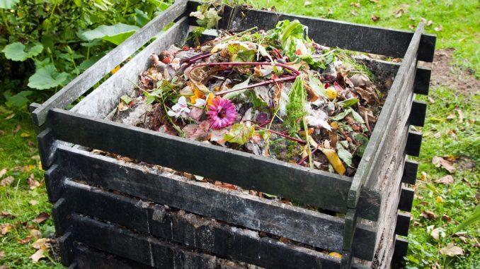Best Compost Bin