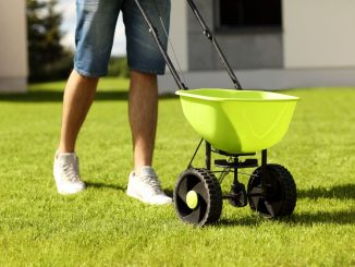 Best Lawn Spreader