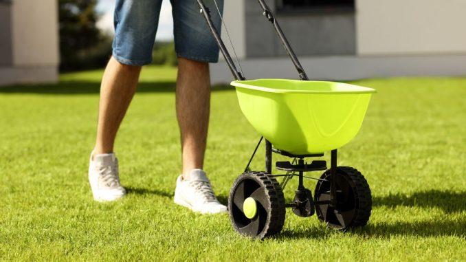 Best Lawn Spreader
